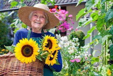 Le jardin thérapeutique : un réel bienfait pour les seniors