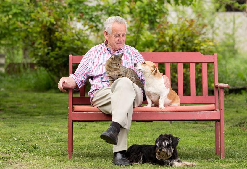quand les maisons de retraite accueillent des animaux